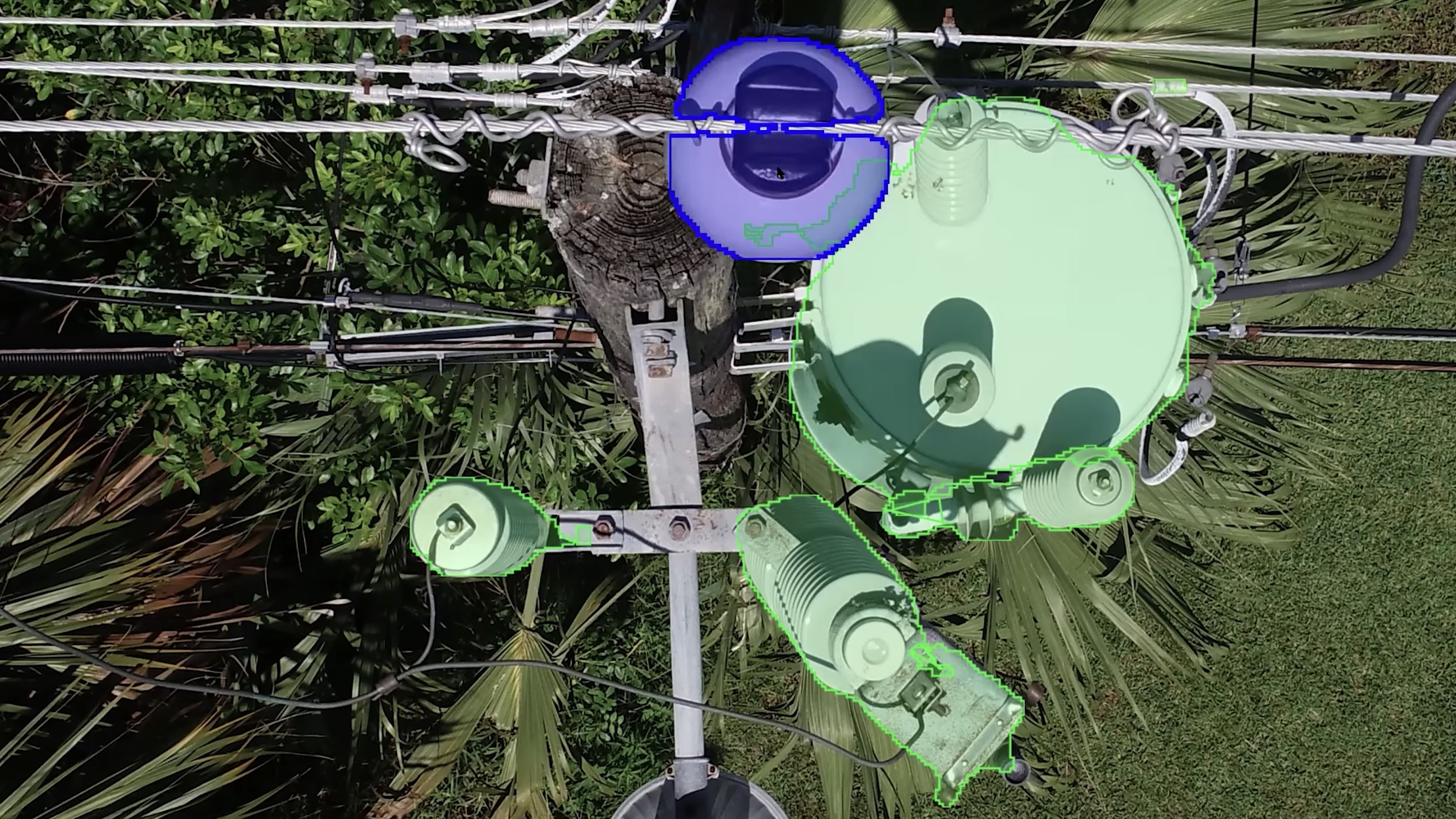 aerial view of distribution pole with AI color-coding different sections
