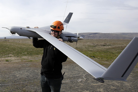 The FAA plans to release rules for small drones this year that could help decide whether incumbents or upstarts thrive. Above, a ScanEagle. Associated Press