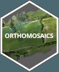 img-orthomosaics
