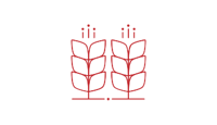 icon-svg-agriculture