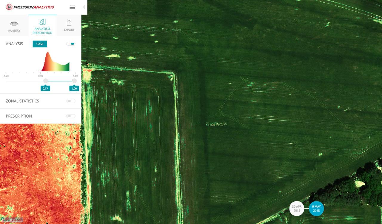 optimized_vegetation-10