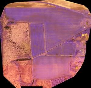 Multispectral Sensor Output